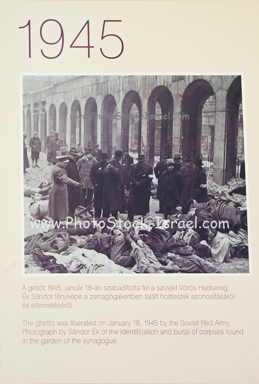 Historic image of the Jewish Ghetto In Budapest, Hungary. Liberated by the Soviet Red Army in 1945. Burial of corpses found in the garden of the Synagogue