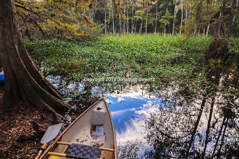 A canoe on the bank of scenic Fisheating Creek in Florida's Fisheating Creek Wildlife Management Area (WMA). WATERMARKS WILL NOT APPEAR ON PRINTS OR LICENSED IMAGES.