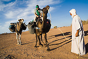 Elhussein Sbiti leads an American client on a three-day camel trek to the remote dunes of Erg Zehar, near M'hamid in the Moroccan Sahara, as a water bottle falls from one of the camels. Sbiti, like many berber nomads in the region, has found opportunity in the new tourism trade burgeoning since the settling of tensions between Morocco and neighboring Algeria.