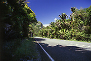 The speed limit at this stretch of Punakaiki Road has been altered over the years. In 2001 it stood at 80 km/h.
