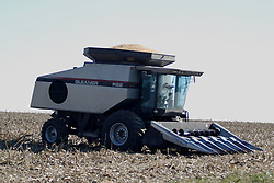 29 October 2006:  Corn can be seen rising from the hopper of this Gleaner combine. Rural McLean County, Illinois.<br />