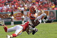 October 14, 2007 - Kansas City, MO..Tight end Reggie Kelly #82 of the Cincinnati Bengals gets upended by defensive back Patrick Surtain #23 of the Kansas City Chiefs, during a NFL football game at Arrowhead Stadium in Kansas City, Missouri on October 14, 2007...FBN:  The Chiefs defeated the Bengals 27-20.  .Photo by Peter G. Aiken/Cal Sport Media