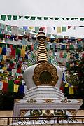 Tibetan prayer flags at Dalai Lama's temple, Dharamsala, Himachal Pradesh, India