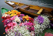 Paradise on Earth. Srinagar, Dal Lake. Kashmir.