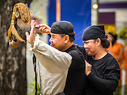 02 DECEMBER 2014 - BANGKOK, THAILAND: Puppeteers from Laos perform during an ASEAN exhibit at the Trooping of the Colors military parade on Sanam Luang in Bangkok. The Thai Royal Guards parade, also known as Trooping of the Colors, occurs every December 2 in celebration of the birthday of Bhumibol Adulyadej, the King of Thailand. The Royal Guards of the Royal Thai Armed Forces perform a military parade and pledge loyalty to the monarch. Historically, the venue has been the Royal Plaza in front of the Dusit Palace and the Ananta Samakhom Throne Hall. This year it was held on Sanam Luang in front of the Grand Palace.    PHOTO BY JACK KURTZ