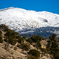 Snow caps the slopes of Mount Taylor viewed from New Lobo Canyon Thursday.
