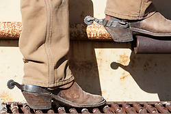 Cowboy boots and spurs, Ladder Ranch, west of Truth or Consequences, New Mexico, USA.