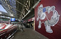 June 23, 2017 - Visão geral da Arena Kazan decorada com o mascote lobo siberiano Zabivaka, em Kazan, nesta sexta-feira (23). Uma das 4 sedes da Copa das Confederações FIFA 2017 na Rússia. (Credit Image: © Rodolfo Buhrer/Fotoarena via ZUMA Press)