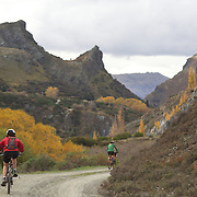 Competitors in action during the New World Tour de Wakatipu bike race on Saturday. Six hundred and ninety people entered the bike race which featured an  exclusive course with breathtaking views from Millbrook Resort in Arrowtown to Chard Farm along the Kawarau River, via the trails and tracks of the Wakatipu basin with distances of 36 kilometres fun riding for recreational bikers and 45 kilometres for elite and sport racers. The event was part of the inaugural Queenstown Bike Festival, which took place from 16th-25th April. The event hopes to highlight Queenstown's growing profile as one of the three leading biking centres in the world. Queenstown, Central Otago, New Zealand. 23rd April 2011. Photo Tim Clayton..
