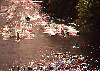 Outdoor recreation, Rowing, Scull, Sculling, Young Adults, College Sculling, Rowing Competition, Ohio River, Pittsburg,