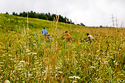 "Children running up a close by hill at the Roma part of the district ""Podsadek"" in eastern Slovakia. The town of Stara Lubovna has a population of 16350, of whom 2 060 (13%) are of Roma origin. The majority of Roma live in the Podsadek district, where 980 (74%) out of 1330 inhabitants are Roma."