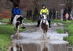 2021_01_30_Flooding_LNP