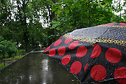 Krakow, Poland umbrella and summer rain in park.