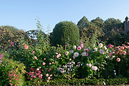 A border of mixed Dahlias at Chenies Manor House during the Dahlia Festival. Chenies, Rickmansworth, Buckinghamshire, UK