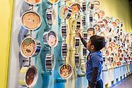 The Chicago Children's Museum