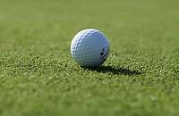 NOORDWIJK - Titleist Golfbal Noordwijkse Golfclub./ COPYRIGHT KOEN SUYK