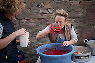 A woman tries the salty point of the blood for blood sausages in traditional way pig slaughtering.  Doneztebe (Basque Country). December 08. 2016. The slaughter traditionally takes place in the autum and early winter and the work often is done in the open. (Gari Garaialde / Bostok Photo)
