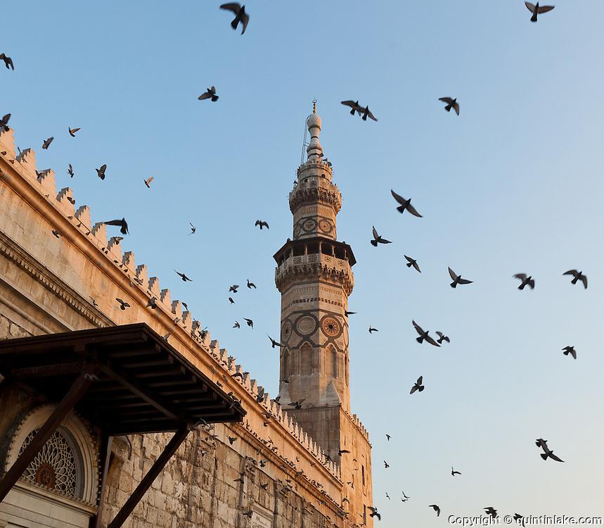 Birds fly by the Minaret of Qaitbayt, Umayyad Mosque, Damascus, Syria