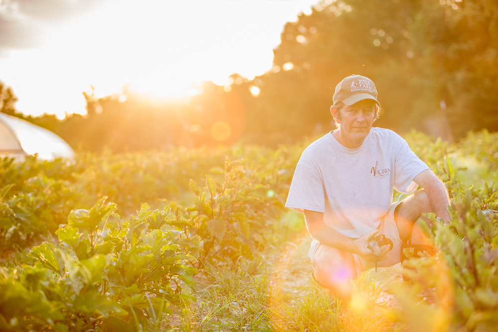 Farmer Tends to His Crops<br /> Virginia Commercial Photographer
