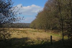 Zuidvelde, Noordenveld, Drenthe, Netherlands