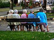 Zielona Góra (woj. lubuskie), 20.07.2013. Starsze kobiety wypoczywające na ławce przy  Alei Niepodległości, Zielona Góra.