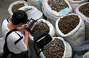 A medicine seller counts his money at a traditional Chinese medicine market in Bozhou, Anhui Province, China on 02 August, 2011. The birth place of legendary doctor Hua Tuo, Bozhou is now one of the four major trading centers in China for traditional Chinese medicine.
