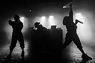 Australian electro-rave project Haiku Hands at Haldern Pop Festival