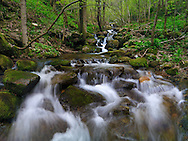 This is just one of the uncountable small creeks forming the Chiusella river. Taken at the top of the Valchiusella in Piedmont, Italy. Stitched from five vertical takes