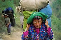 Nepal, porteurs, Les routiers de l'Himalaya. // Nepal, Porter of Himalaya.