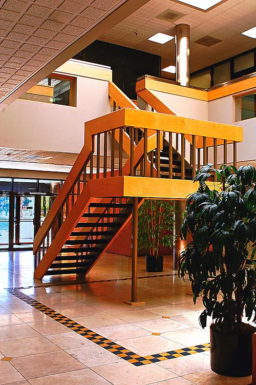 Mid century modern staircase .