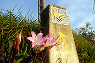 "Spain ""Walking the Camino Primitivo"" Jay Dunn"