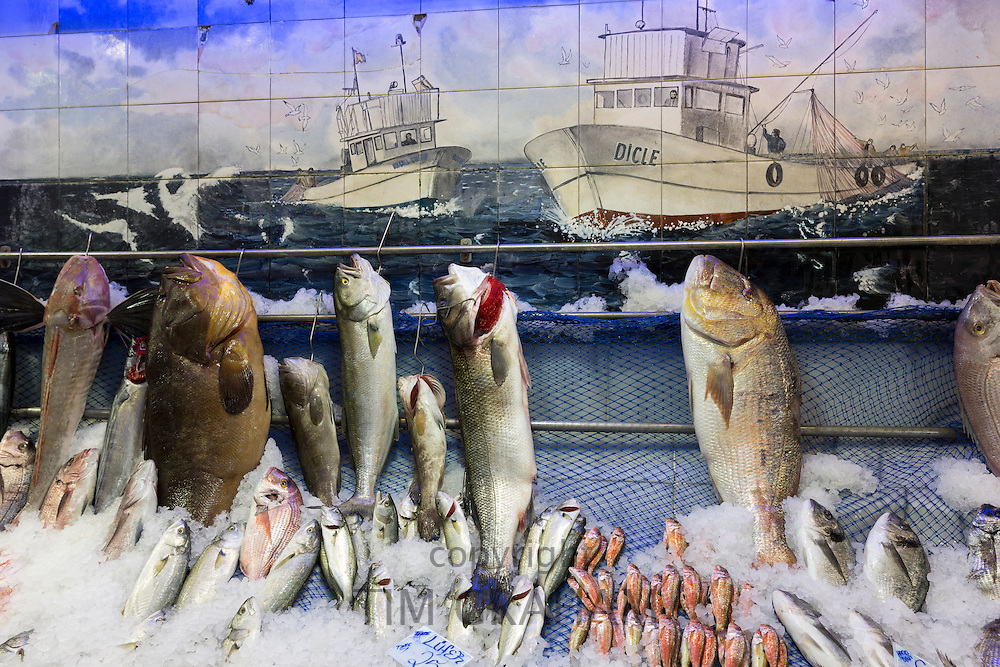 Fresh fish including Orfoz on sale at Dicle fishmongers in food market in Kadikoy district Asian side of Istanbul, East Turkey