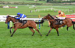 Reserve Tank and Robert Power (left) jump the last to win the Grade 1 Alanna Homes Champion Novice Hurdle during day four of the Punchestown Festival at Punchestown Racecourse, County Kildare, Ireland.