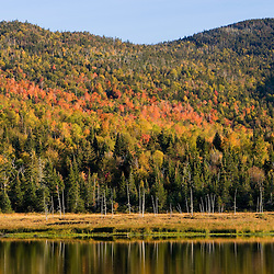 Fall at Big Brook Bog in Pittsburg, New Hampshire.