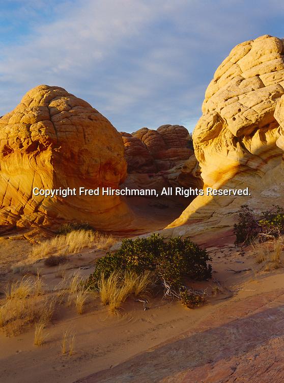 Haystacks of Navajo Sandstone illuminated by late afternoon light, Vermilion Cliffs National Monument, Paria-Vermilion Cliffs Wilderness, Arizona.