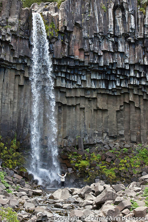 Svartifoss in Skaftafell National Park, south Iceland