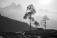 Vietnam Images-Landscape-Sapa Hoàng thế Nhiệm Phong cảnh Sapa
