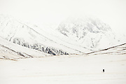 A hunter and his dog. Over the plain named Mirzo Murad..Between Langar and Bozoi Gumbaz, the entrance to the Little Pamir Plateau...Trekking up the Wakhan frozen river, the only way up to reach the high altitude Little Pamir plateau, home of the Afghan Kyrgyz community.