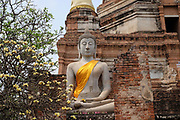 Buddha statue at Wat Yai Chai Mongkhon Buddhist Temple on 6th March 2016 in Ayuthaya, Northern Thailand. Wat Yai Chai Mongkhon or the Great Monastery of Auspicious Victory was built by King U Thong in 1357 to house monks from Sri Lanka.