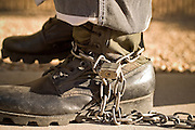 """24 MARCH 2004 - PHOENIX, AZ, USA: A member of the juvenile chain gang walks on a sidewalk in Phoenix, AZ, March 24, 2004. The juveniles volunteer to serve Maricpoa County Sheriff Joe Arpaio's chain gang. The sheriff, who claims to be """"the toughest sheriff in America,"""" has chain gangs in both the men's and women's jails and now has a chain gang for juveniles sentenced and serving time as adults in the county jail system. The sheriff claims it is the only juvenile chain gang in the country.   PHOTO BY JACK KURTZ"""