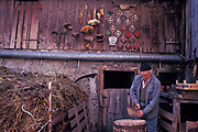 Dressed in typical overalls for the area, traditional Alpine farmer Peter Eberle works in the courtyard of his dairy and goat farm in Balzers, Liechtenstein, on 8th February 1990, in Balzers, Liechtenstein. Liechtenstein is a landlocked Principality bordered by the Alpine countries of Austria and Switzerland and is a winter sports resort, though best known as a tax haven, attracting companies worldwide to register their assets in complete secrecy. Its agricultural output is mainly wheat, barley, corn, potatoes, livestock and dairy products though technology companies have been eroding the traditional ways of life such as Peter's for decades.