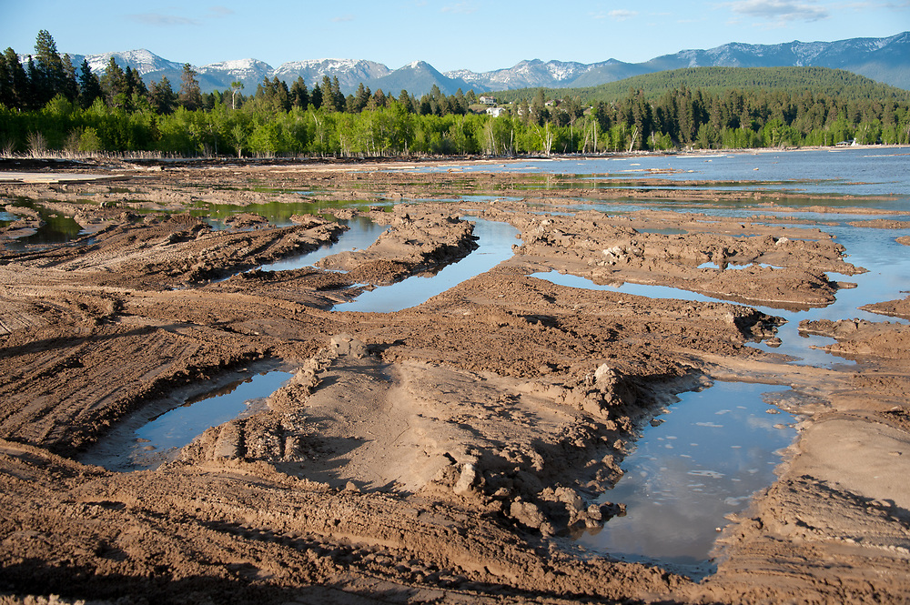 Another view showing the severe rutting and gouging of the lakebed. Destruction of the lakebed and the resulting loss of scenic value to the area caused by construction of a private bridge to Dockstader Island on the north shore of Flathead Lake in Bigfork, Montana, in violation of the state's Lakeshore Protection Act, as photographed on May 20, 2015.
