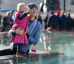 © Licensed to London News Pictures. 11/11/2016. London, UK. Sarah Vanderput and her one year old daughter Lexi, places a poppy in to the fountain during Silence in the Square, a service held in Trafalgar Square, London to mark Remembrance Day. A minutes silence is held on the 11th hour of the 11th day of the 11th month, to recall the end of hostilities of World War I.  Photo credit: Ben Cawthra/LNP