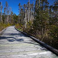 North America, Canada, Nova Scotia, Tor Bay.