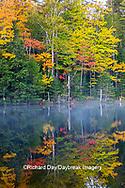 64776-02101 Council Lake in fall color Alger Co.  MI