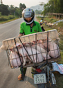 Motorbikes are the main means of transport in Vietnam.<br /> ©Ton Koen/Exclusivepix Media