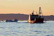 Icebergs from the icefjord, Ilulissat, Disko Bay, Greenland, Polar Regions