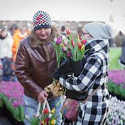 NLD/Amsterdam/20190119 - Nationale Tulpendag 2019, doop tulp Quinty Trustfull, toeristen plukken tulpen