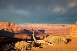 Evening Thunderstorm, Canyonlands National Park, Moab, Utah