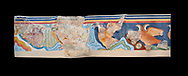The Minoan 'Partridge Fresco', wall art from the  'Guset House' Knossos Palace, 1600-140 BC. Heraklion Archaeological Museum. Black Background. <br /> <br /> This Minoan fresco was painted in vivid colours using fine brush strokes and colour gradients. It portrays partridges , commonly found in Crete, among rocks and thopical Cretian flora. It decorated the pavillion in the so called 'Guset House' or 'Caravanserai. .<br /> <br /> If you prefer to buy from our ALAMY PHOTO LIBRARY  Collection visit : https://www.alamy.com/portfolio/paul-williams-funkystock/minoan-art-artefacts.html . Type -   Heraklion   - into the LOWER SEARCH WITHIN GALLERY box. Refine search by adding background colour, place, museum etc<br /> <br /> Visit our MINOAN ART PHOTO COLLECTIONS for more photos to download  as wall art prints https://funkystock.photoshelter.com/gallery-collection/Ancient-Minoans-Art-Artefacts-Antiquities-Historic-Places-Pictures-Images-of/C0000ricT2SU_M9w